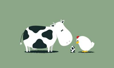 ГМО в кормах для животных
