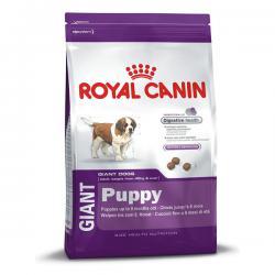 Корм для щенков Royal Canin Giant Puppy