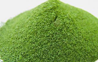 Пресноводные водоросли хлорелла