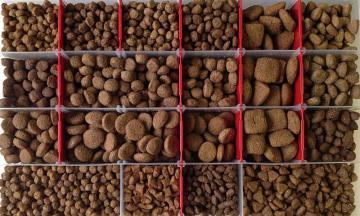 Выбор корма для собак и кошек