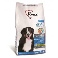 1st Choice Dog Adult Medium & Large Breeds
