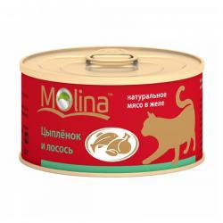 Корм для кошек Molina «Цыплёнок и лосось»