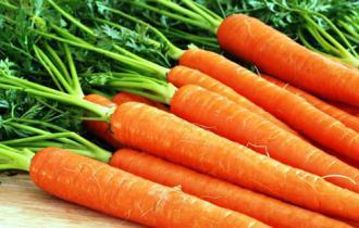 Морковь «Император»