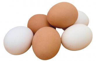 Яйца и яйцепродукты (в т. числе яйца мин. 4% в желтых подушках)