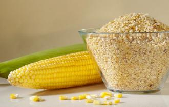Зародыши кукурузы
